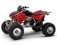 Honda450Girl