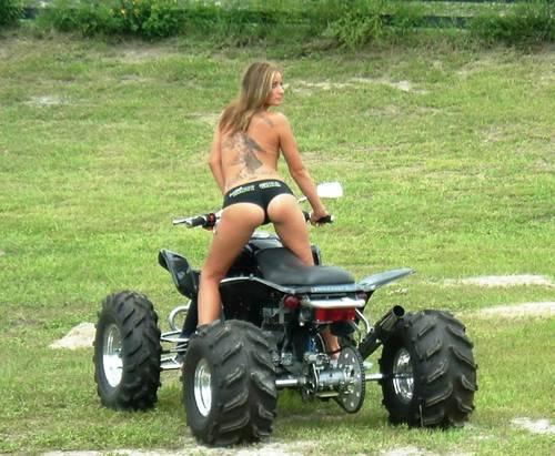 6271-Custom-Harley-Quad.jpg.d0e1f02d88d80f4c525abbd5206f646d.jpg